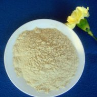 Isolated Soy Protein - TW910